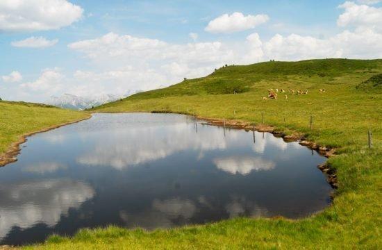 Vacanze sul maso Cone da Val - San Vigilio di Marebbe 7