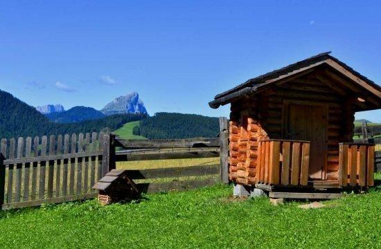 Cone da Val - San Vigilio di Marebbe / South Tyrol 19