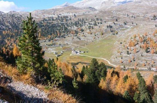 Cone da Val - San Vigilio di Marebbe / South Tyrol 25