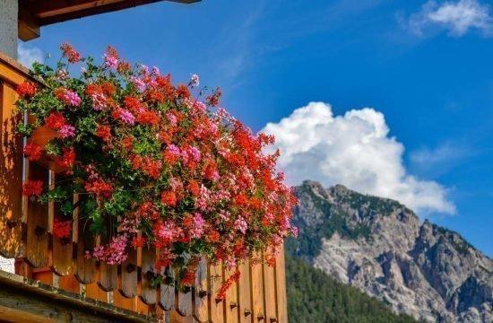 Cone da Val - San Vigilio di Marebbe / South Tyrol 04